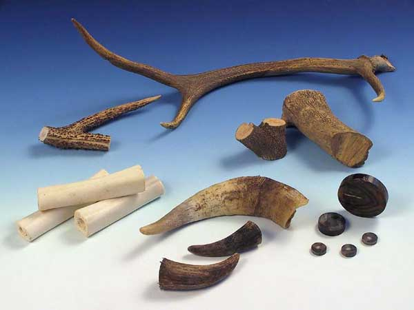 Material: different kinds of horn